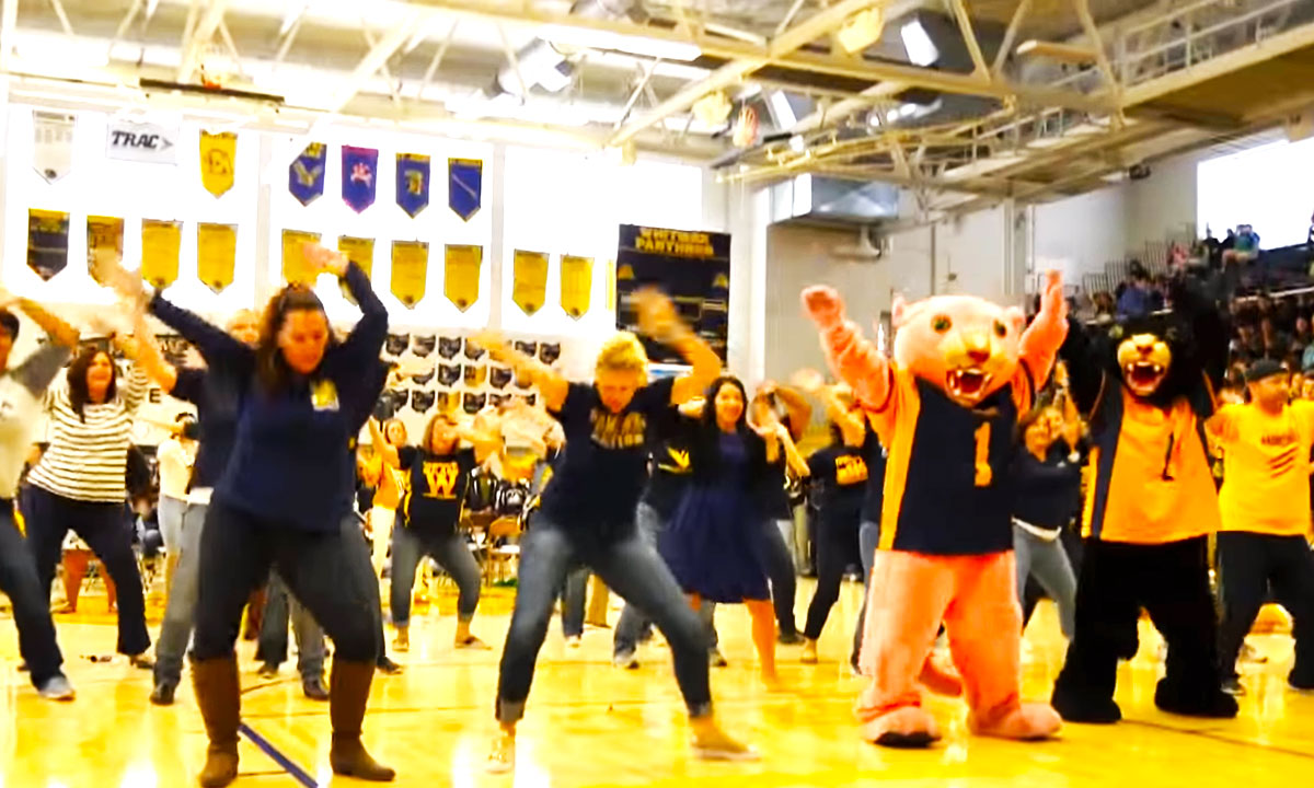 teacher flash mob