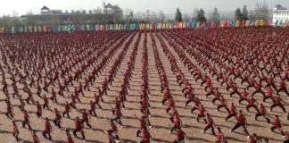 chinese-martial-arts-performance