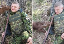 soldier-meets-moose