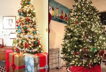 christmas-tree-with-pet-ideas