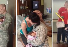 soldier-fly-allowed-to-meet-baby
