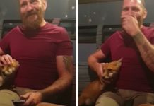 fox-cuddles-with-man