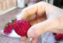 keeping-strawberries-fresh-trick