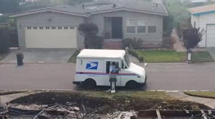 mail-carrier-work-intentions