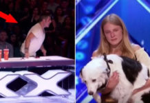 simon-cowell-save-crying-trainer