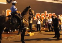police horse dance moves