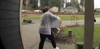 package-thief-swift